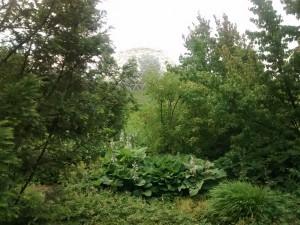 Wurzelgewächsaus botanischer Garten Düsseldorf, 07.07.2015, 18:34, aufgenommen mit Motorola Moto G